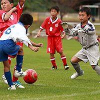 ライオンズカップ少年サッカー大会